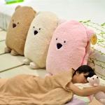 ผ้าห่ม (blanket)