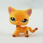 แมว Short Hair สีส้ม #1643