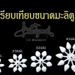 ดอกมะลิตูม (100 กรัม)