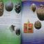 ประมวลภาพและการประกวดพระบูชา-พ ระเครื่อง เหรียญคณาจารย์ / กองทัพบก ครั้งที่.1 thumbnail 8
