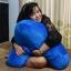 หมอนรูปตัวเอ (A Shaped Body Pillow) thumbnail 8