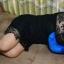หมอนรูปตัวเอ (A Shaped Body Pillow) thumbnail 9
