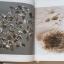 """อนุสรณ์งานพระราชทานเพลิงศพ หลวงปู่เจี๊ยะ จุนฺโท """"พระผู้เป็นดังผ้าขี้ริ้วห่อทอง"""" (ฉบับสมบูรณ์) thumbnail 3"""